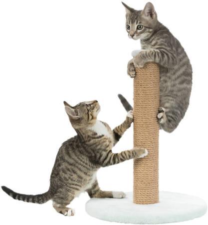 Drapak dla kota w kolorze miętowym