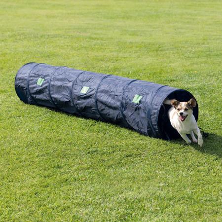 Sztywny tunel zręcznościowy dla małych psów
